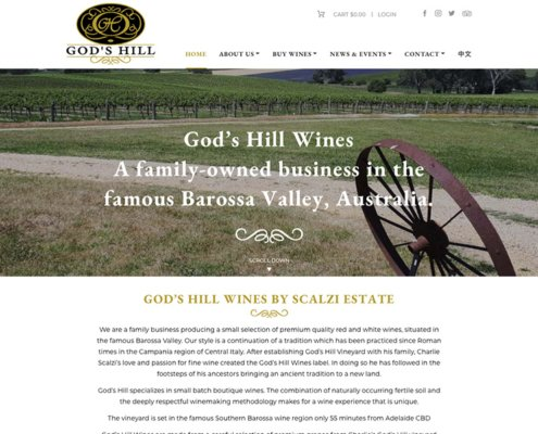 God's Hill Website Screen shot
