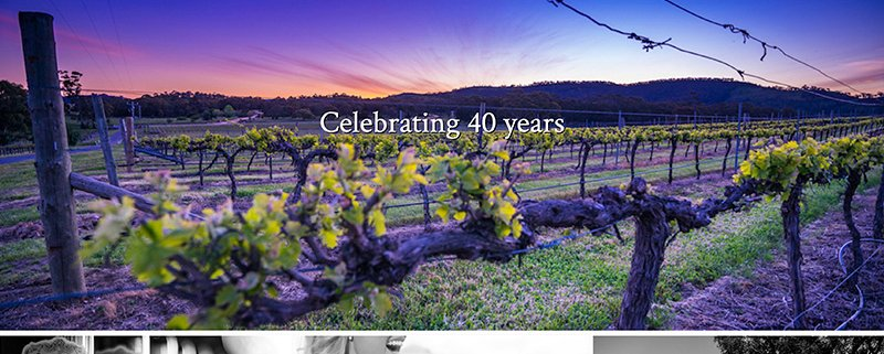 Taltarini Winery Website Screen Shot